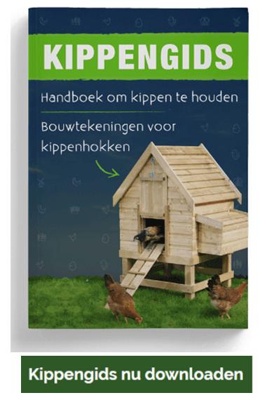 bouwtekeningen kippenhok